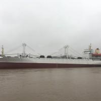 出售2018年造12380立方无限航区冷藏运输船 鱼类运输船
