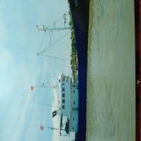 16年造流刺网,单拖,双拖,围网渔船。