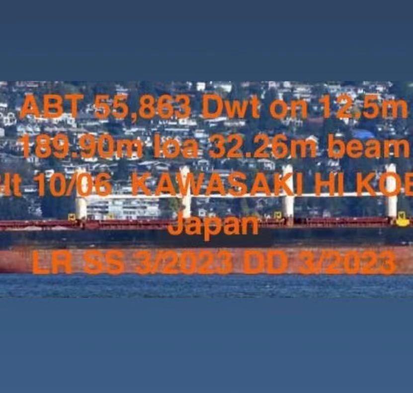 出售外贸55863吨