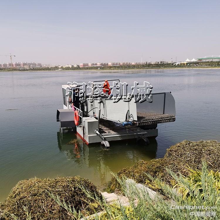 水面漂浮水浒苔水浮萍水草打捞设备