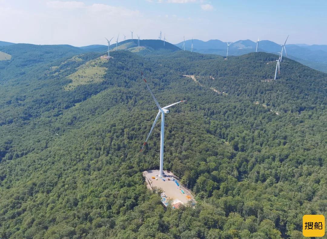 电气风电&北方国际 共商中东欧新能源项目开发